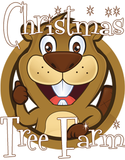 Beavers-Christmas-tree-farm_edited-1